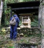 稲根が森・稲根神社