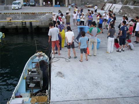 岸壁につけた船から網を引き揚げます。
